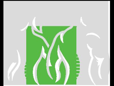 Chiropractic-Shawnee-KS-Spine-Figures-Green.png